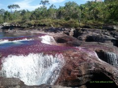 A section of Caño Cristales