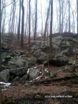 The abundant granite of New England