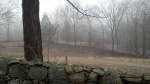 Mist and a stone wall at the Weir Farm