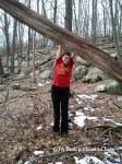 The Yank without a Chain at Ward Pound Ridge
