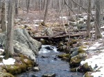 A river running high thanks to melted snow at Ward Pound Ridge