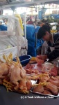 A woman butchering chickens at San Camilo Market