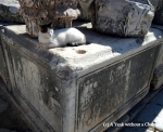 There were dozens of stray cats at Ephesus, and they knew how to make themselves comfortable!
