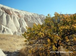 Some of the smooth rocks in Cappadocia