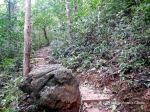 Hiking trail on Cat Ba Island