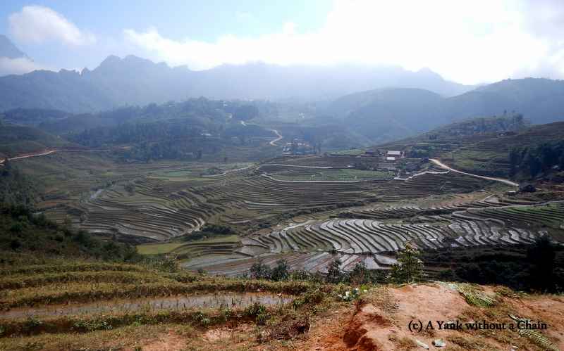 Some of the rice terraces in the Sapa region