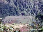 Elaborate rice terraces outside Ta Phin