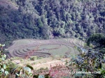 Elaborate rice terraces outside Ta Phin