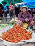A woman selling chilis at Luang Prabang's market