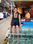 Getting a fish pedicure in Siem Reap. I only learned afterward that these are actually really bad for the fish. I won't be getting another one!
