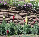 A stone wall at Buphing Palace