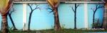 Chiang Mai Street Art Trees