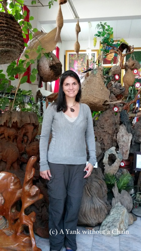 At the Museum of Insects and Natural Wonders in Chiang Mai