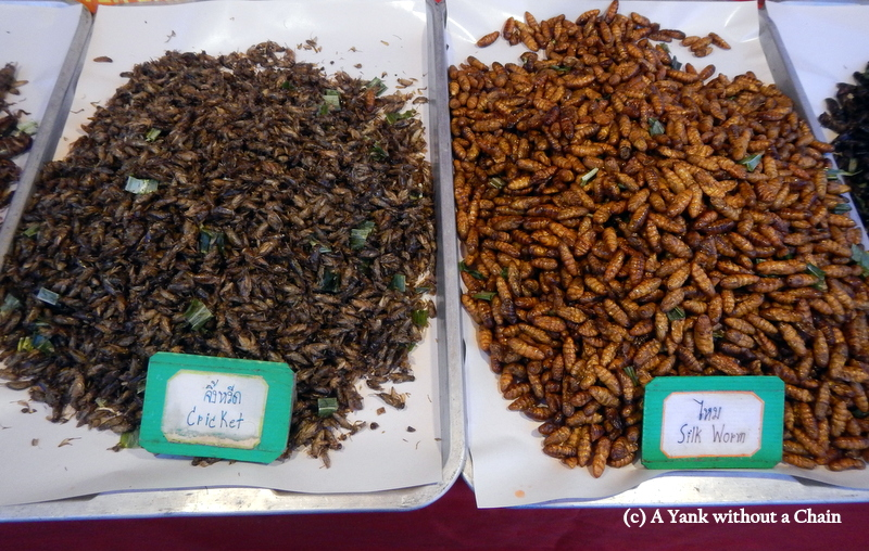 Snack-tastic insects at that Saturday night market in Chiang Mai