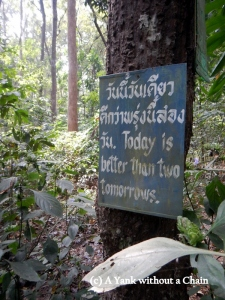 A sign in the forest at Wat Umong
