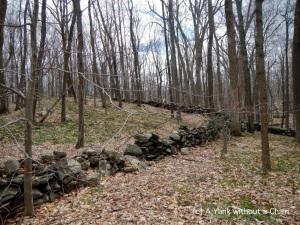 Stone walls at Devil's Den