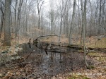 Marshy land at Devil's Den