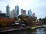 The view of the CBD from the Yarra River