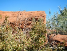 A smaller rock near Uluru