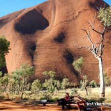The Yank without a Chain sitting on a bench at the base of Uluru