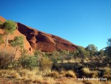 Uluru and some trees