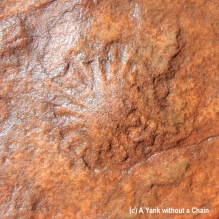 An imprint of a jellyfish fossil from when Kings Canyon was under water