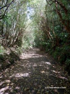 Historic Rail Trail