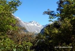 Key Summit Alpine Track 3