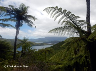 Queen Charlotte Track 6