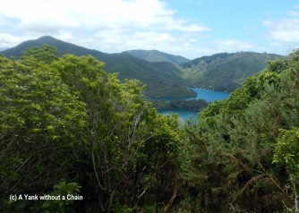 Queen Charlotte Track 7